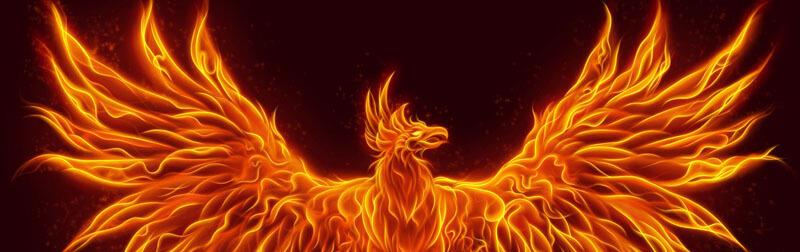 ققنوس پرنده ای افسانه ای است که پس از مرگ می تواند مجدد از آتش خاکستر برخیزد